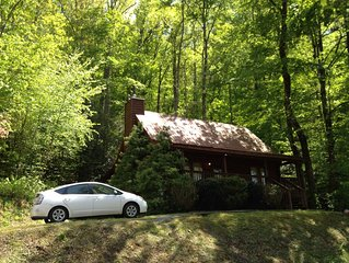 Bear Forest! Great Rates!! Cozy 2bd/2ba Cabin -- Great Location!