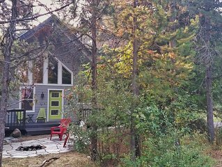 Sweet Spot! Easy 1/2 mi walk to town/Lake Payette from cabin in the trees!
