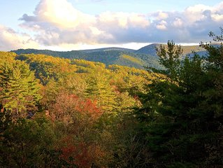 Blue Ridge Mountain Haven- Awesome Views- Secluded Yet Only Minutes to Downtown!