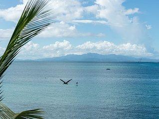Villa Chavaniac - Spectacular Oceanfront Property