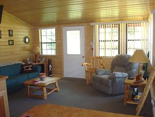Cool Waters Cabin - Ox Yoke #7 - Updated Cabin Along the Lake Fork of the Gunnis