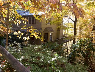 Book now for fall!  Beautifully furnished cabin with awesome year-round views.