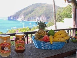 Splendid sea view, island of Montserrat