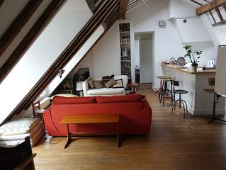 Entire Apartment Under The Parisian Roofs