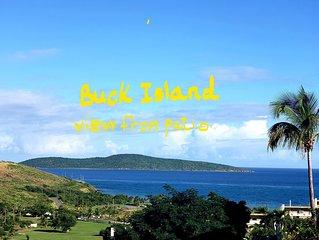Charming Beach Condo The Reef,East End. Captivating Caribbean, Buck Island views