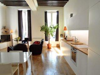 By Place Des Vosges- Heart of Marais-16th Cent-Large-Elegant-AC