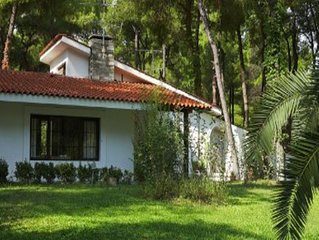 Lovely villa surrounded by pine trees in Sani