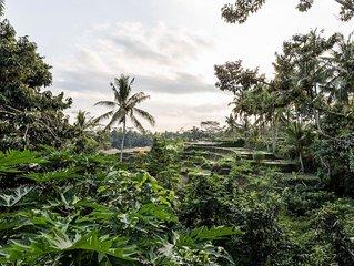 2BR Villa In a Balinese Home Environment