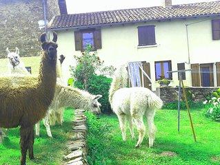 Gite nature Lamalpapoche entoure par les animaux de la ferme.