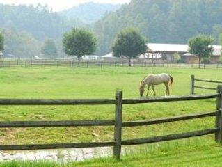 Cute & Cozy Unit On Horse Ranch, No Frills, Pet-Friendly - Near Boone