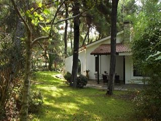 Luxurious villa in the woods in Sani