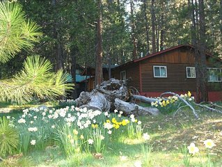 Vacation Home in Yosemite Park, Amazing Amenities, Near River!