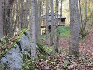 Secluded Mountain Cabin, Listen to a Waterfall from the Screened Porch