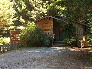 Quiet Cottage Ten Minutes from Mendocino and the Beach