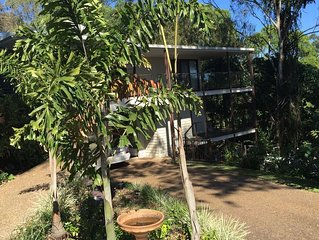 Amongst The Trees in Buderim