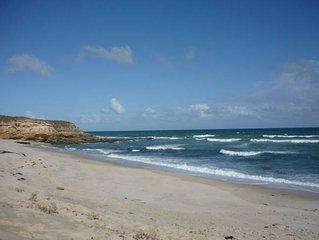 Coastal Whispers - Ocean - 1 Acre - Dog Friendly