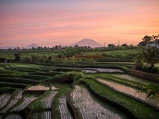 RiceViewVilla - Breathtaking views in Canggu