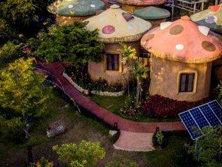 Leafy Greens Chiangmai : Mushroom House M2