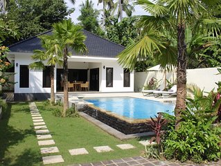 Villa in a wooded area by Lovina