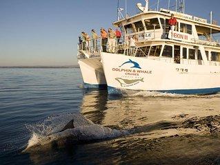 Dolphin Blue :) - Jervis Bay Vincentia
