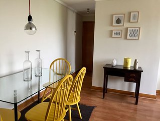 Great And Cozy Apartment In Downtown Santiago