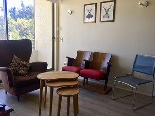 Acogedor y estupendo apartamento en el mejor lugar de Santiago