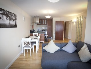 Toothbrush Apartments - 2 Bedroom / 2 bath Apartment in Central Ipswich