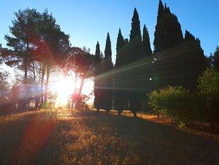 B&B Casa Divina in provincia di Pisa - CAMERA DEVOZIONE
