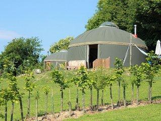 Luxury Yurts on The Garlic Farm sleeping 2 - 6