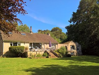 Christmas and New Year prices reduced - Sleeps 8, nr stunning beaches, in woods