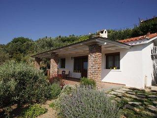 Welcome to Villa Arkos in Agia Kali Villas, Skiathos