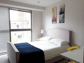 2 bedroom modern apartment in Shoreditch