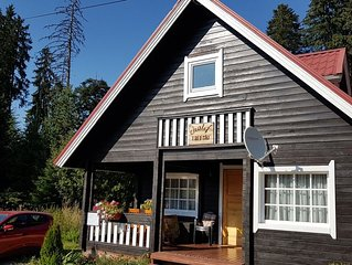 Superb chalet with sauna in the center of Borovets 3 minutes walk from