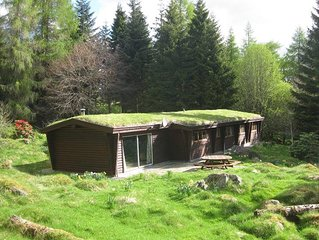 3-bedroom log house set in woodland in the heart of Highland Perthshire