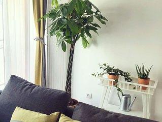 Appartement avec balcon plein centre T2 45m2
