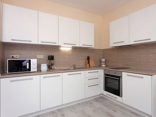 fully equipped one-bedroom apartment with one bedroom and one living room