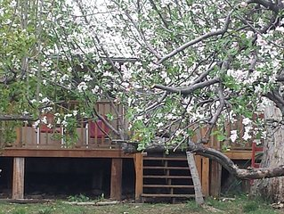 Amelia's Orchard - Located 5 Minutes From Taos Ski Valley
