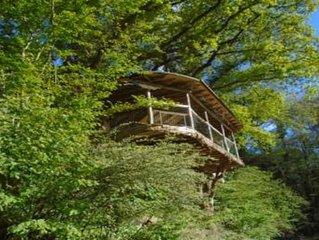 Une cabane dans les arbres grand format, écologique et accessible à tous