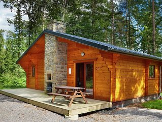 Detached wooden chalet with an open fireplace and a bathtub in a wooded park