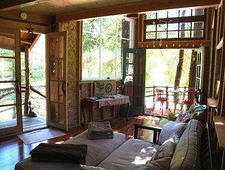 Treehouse in the Santa Cruz Mountains,  Redwoods,  Beaches & Silicon Valley