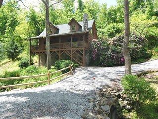 Beautiful Acorn Cabin, Dog-friendly, 10 min from Asheville