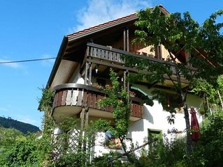 Vacation home Baiersbronn for 2 persons with 1 bedroom - Holiday apartment