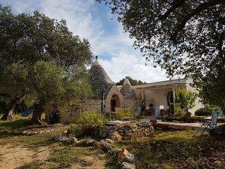 TRULLO im immergrunen Olivenhain, am  Absatz Italiens, Apulien.