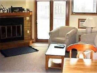 SKI-IN, SKI-OUT, hike, bike, fish,, golf, swim--beautiful Lake Superior N. Shore, holiday rental in Lutsen