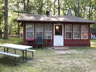 Cozy 'Up North' Cabin in the woods with Pentwater Lake frontage and access