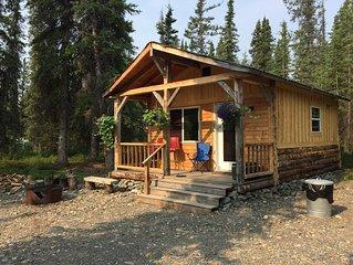 A Small Rustic Cabin near Denali National Park