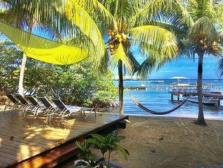 Beach House Across From Dolphin Sanctuary!
