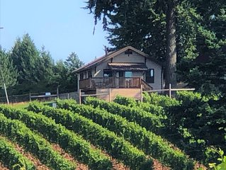 The Cottage at Campbell Lane - A Vineyard Cottage With A Valley View
