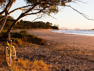 Saligna by The  Sea at Sandy Beach  -Coffs Harbour