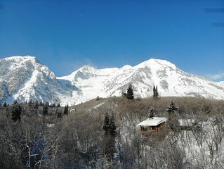 Secluded 3 Bedroom Cabin, Hot Tub, View of Ski Slopes, Wood Burning Fireplaces
